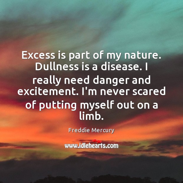 Excess is part of my nature. Dullness is a disease. I really Freddie Mercury Picture Quote