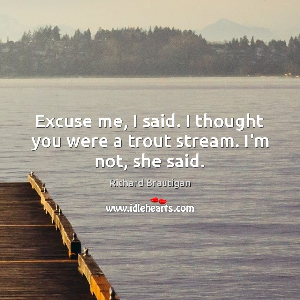 Image, Excuse me, I said. I thought you were a trout stream. I'm not, she said.