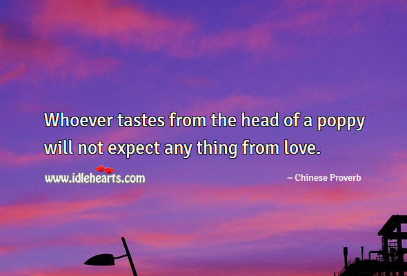 Image, Whoever tastes from the head of a poppy will not expect any thing from love.