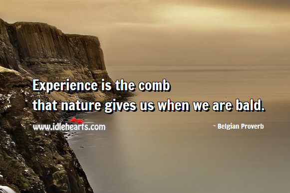 Experience is the comb that nature gives us when we are bald. Belgian Proverbs Image