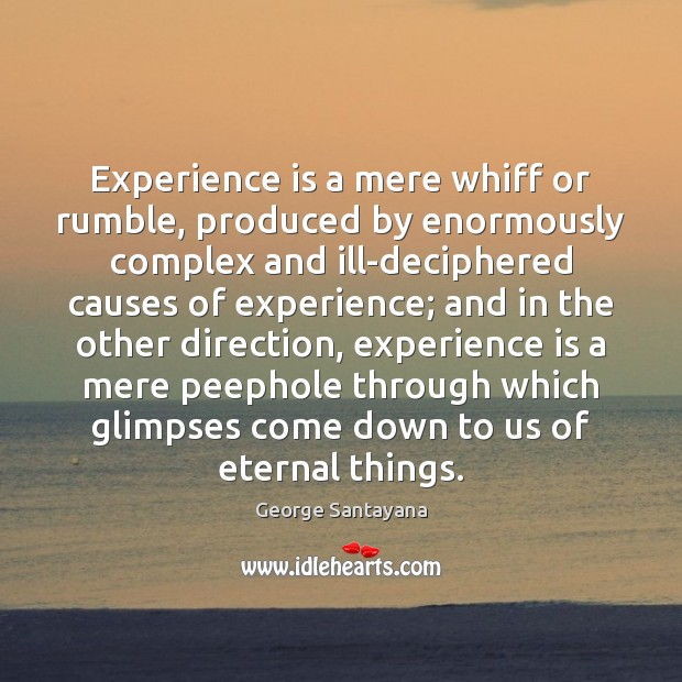 Experience is a mere whiff or rumble, produced by enormously complex and Experience Quotes Image