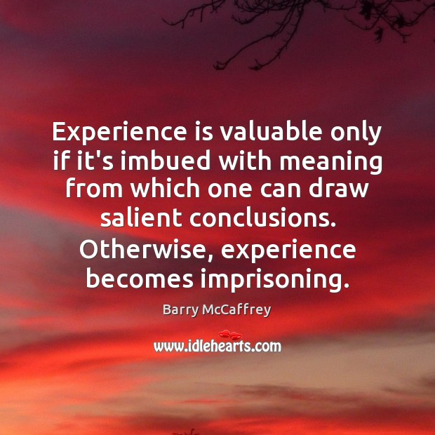 Experience is valuable only if it's imbued with meaning from which one Experience Quotes Image