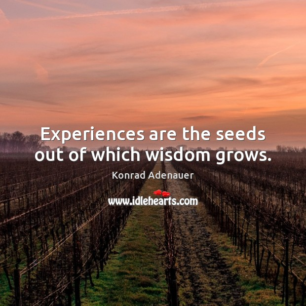 Experiences are the seeds out of which wisdom grows. Image