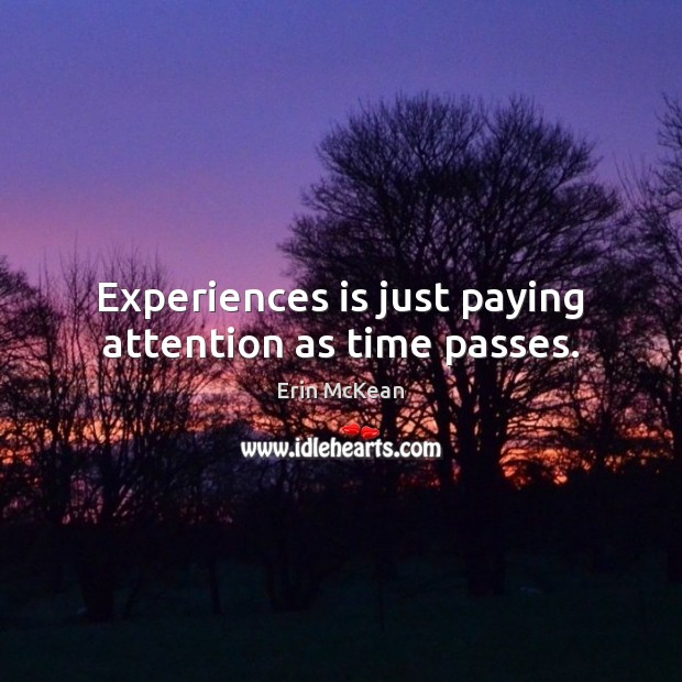 Experiences is just paying attention as time passes. Erin McKean Picture Quote