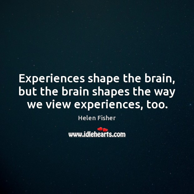 Experiences shape the brain, but the brain shapes the way we view experiences, too. Helen Fisher Picture Quote