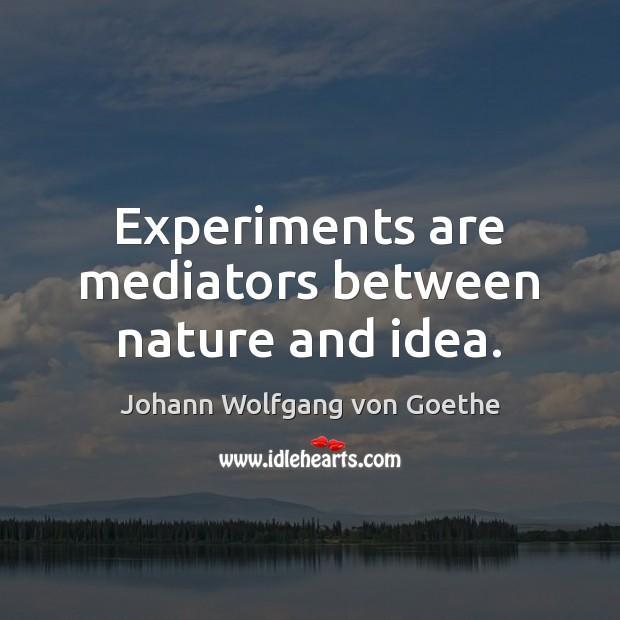 Experiments are mediators between nature and idea. Image
