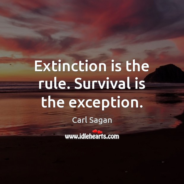 Extinction is the rule. Survival is the exception. Image