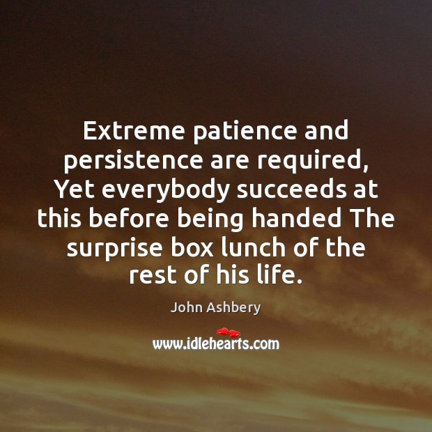 Extreme patience and persistence are required, Yet everybody succeeds at this before John Ashbery Picture Quote