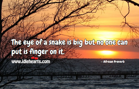 Image, The eye of a snake is big but no one can put is finger on it.