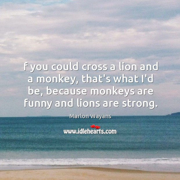 F you could cross a lion and a monkey, that's what I'd Image
