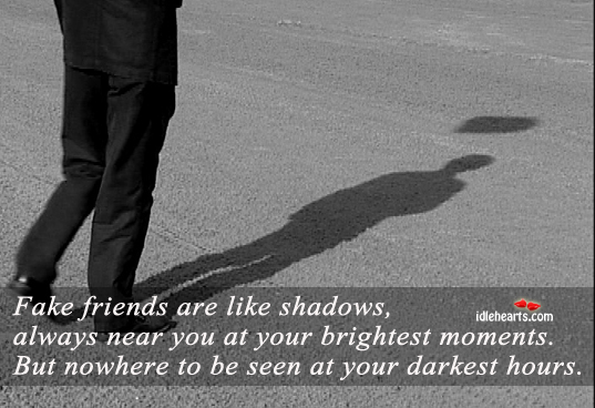 Fake Friends Are Like Shadows…