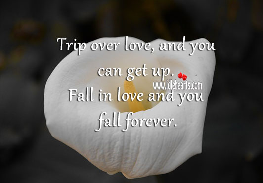 Image, Trip over love, and you can get up. Fall in love and you fall forever.