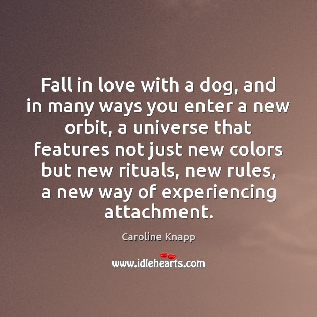 Fall in love with a dog, and in many ways you enter Caroline Knapp Picture Quote
