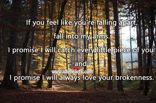 If you feel like you're falling apart, fall into my arms. Promise Quotes Image