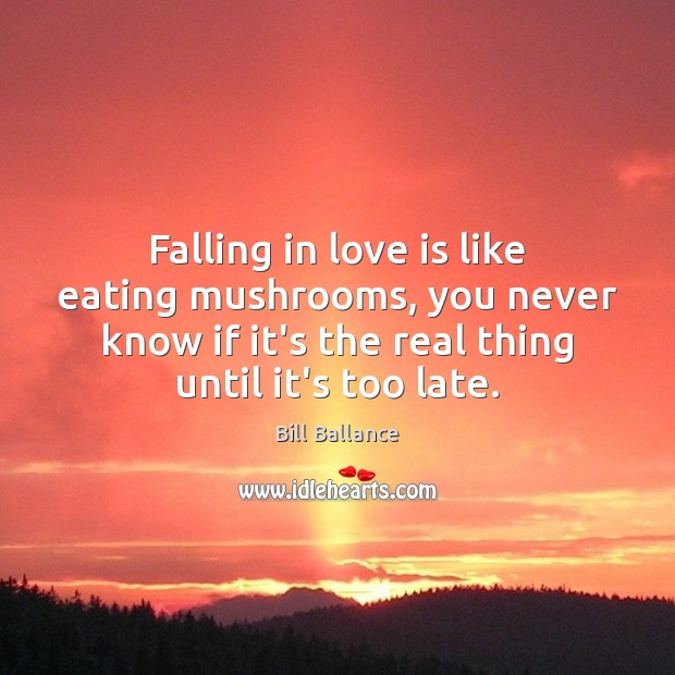 Image, Falling in love is like eating mushrooms, you never know if it's