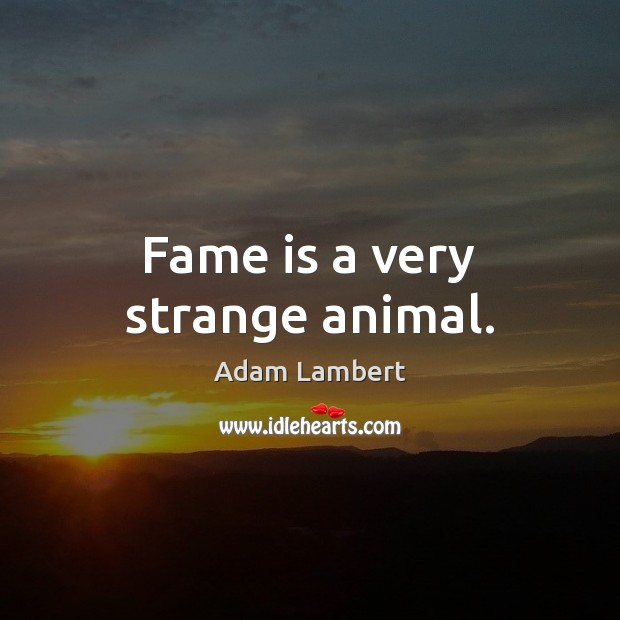 Fame is a very strange animal. Adam Lambert Picture Quote