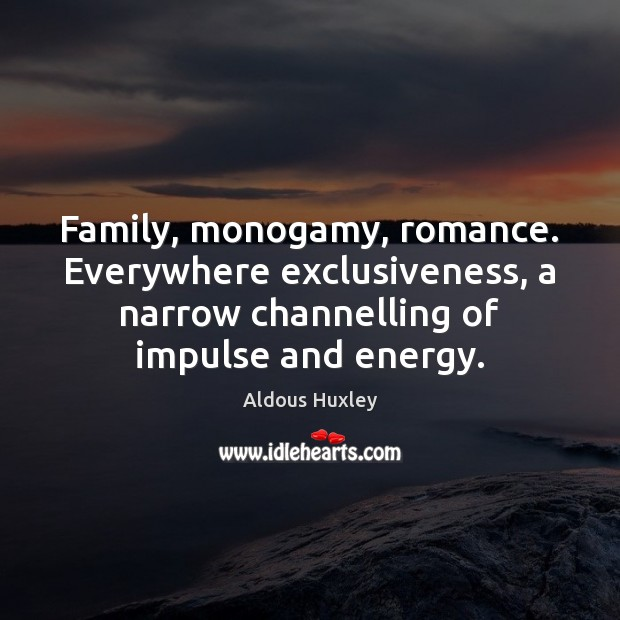 Family, monogamy, romance. Everywhere exclusiveness, a narrow channelling of impulse and energy. Image