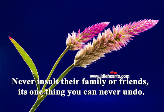Never insult their family or friends. Insult Quotes Image