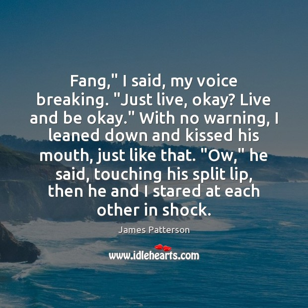 """Fang,"""" I said, my voice breaking. """"Just live, okay? Live and be Image"""
