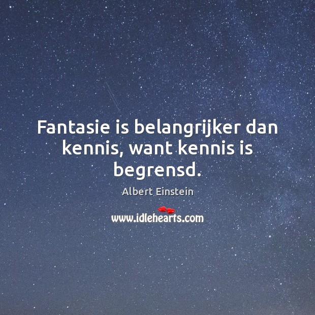 Image, Fantasie is belangrijker dan kennis, want kennis is begrensd.