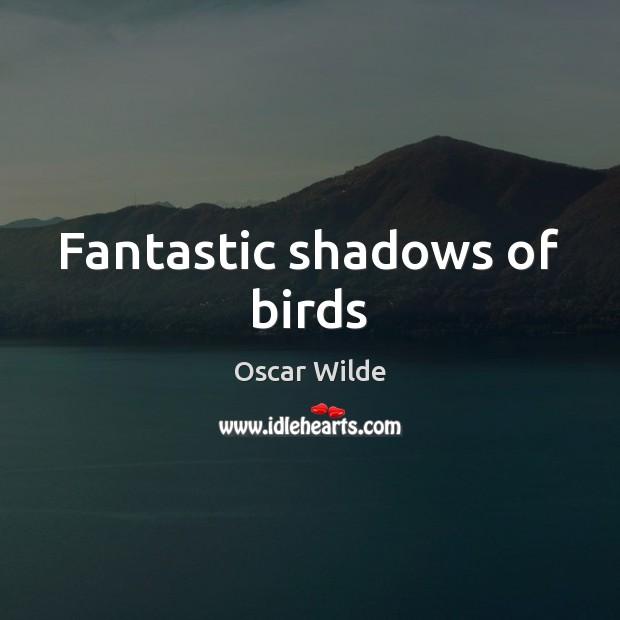 Fantastic shadows of birds Image