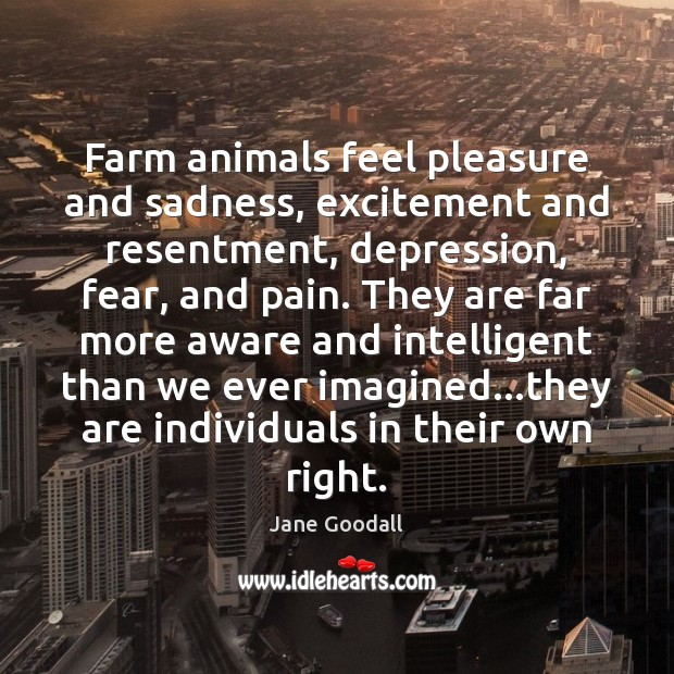 Farm animals feel pleasure and sadness, excitement and resentment, depression, fear, and Jane Goodall Picture Quote