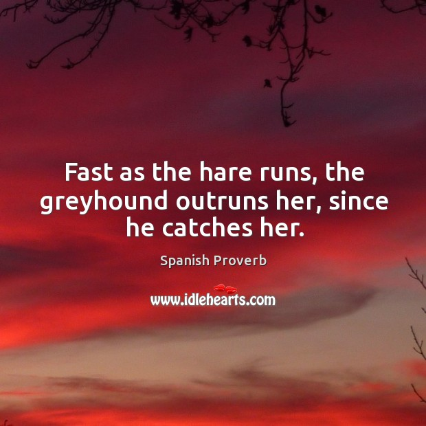 Image, Fast as the hare runs, the greyhound outruns her, since he catches her.