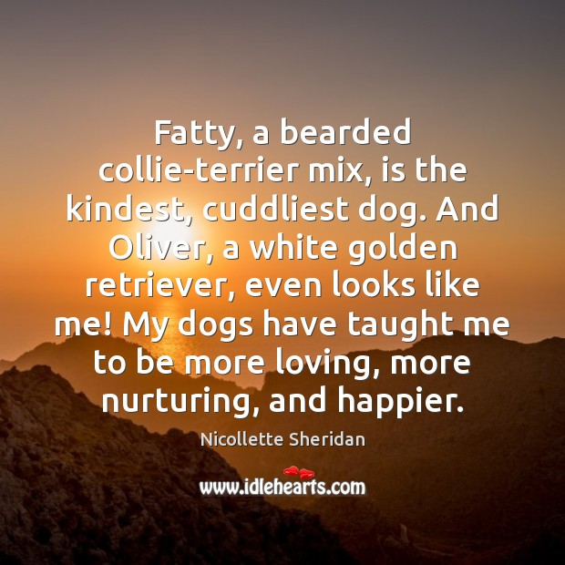 Fatty, a bearded collie-terrier mix, is the kindest, cuddliest dog. And Oliver, Image