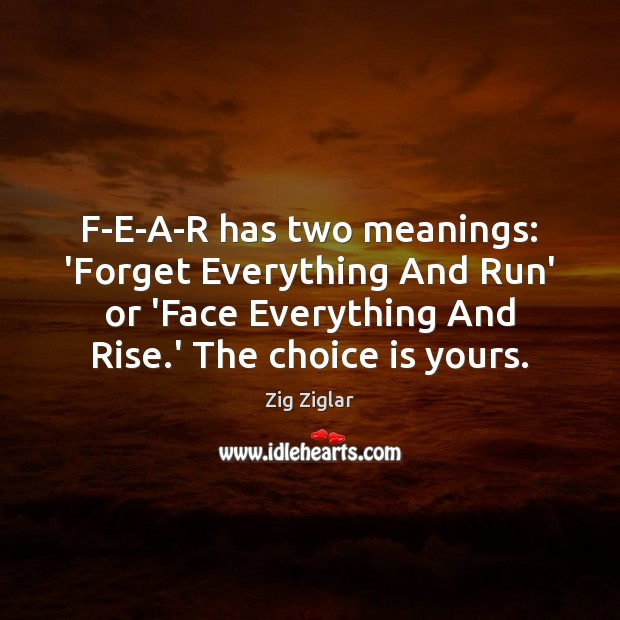 Image, F-E-A-R has two meanings: 'Forget Everything And Run' or 'Face Everything And