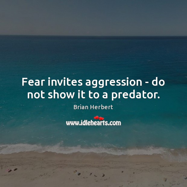 Fear invites aggression – do not show it to a predator. Image