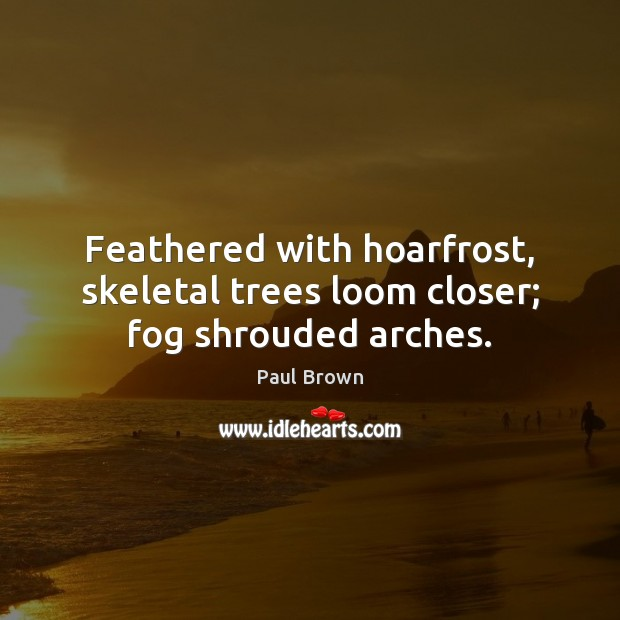 Feathered with hoarfrost, skeletal trees loom closer; fog shrouded arches. Image