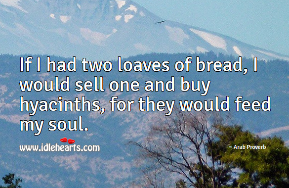 Image, If I had two loaves of bread, I would sell one and buy hyacinths, for they would feed my soul.