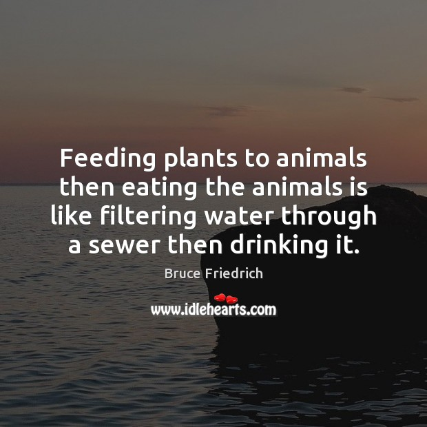 Image, Feeding plants to animals then eating the animals is like filtering water