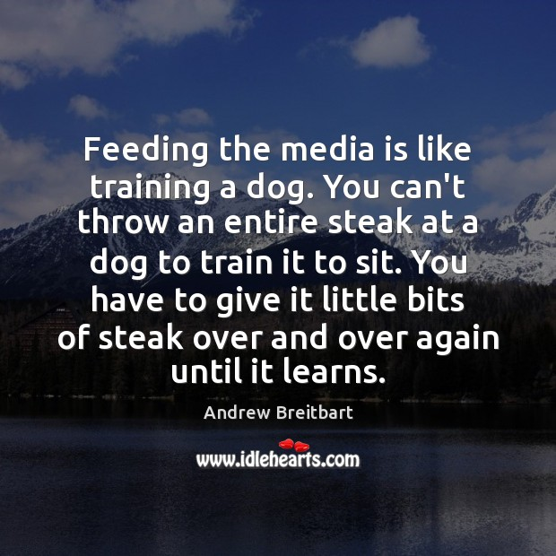 Image, Feeding the media is like training a dog. You can't throw an