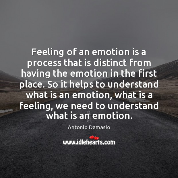 Image, Feeling of an emotion is a process that is distinct from having