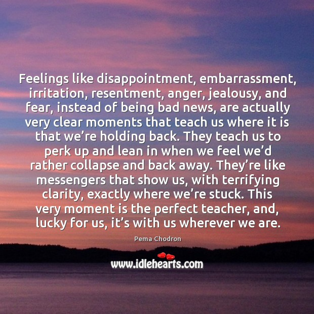 Image, Feelings like disappointment, embarrassment, irritation, resentment, anger, jealousy, and fear