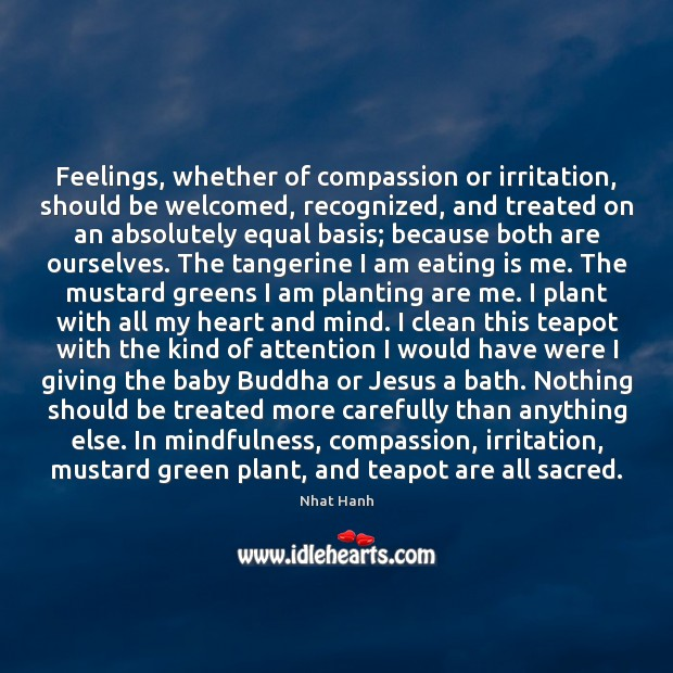 Feelings, whether of compassion or irritation, should be welcomed, recognized, and treated Image