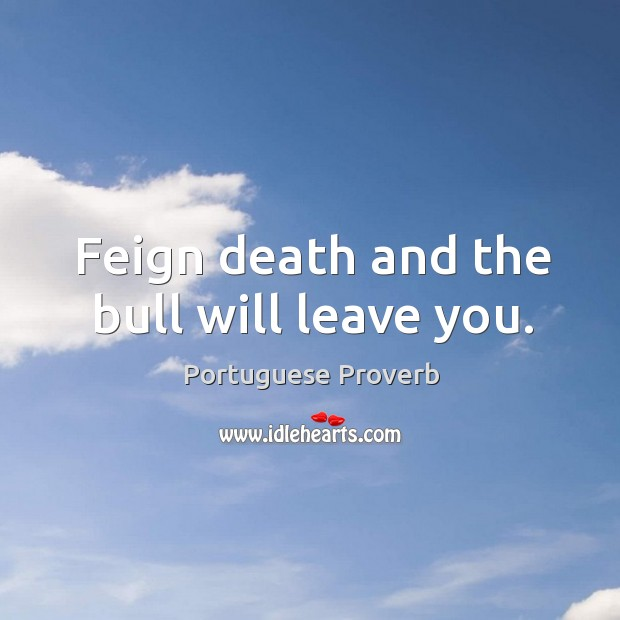 Feign death and the bull will leave you. Portuguese Proverbs Image