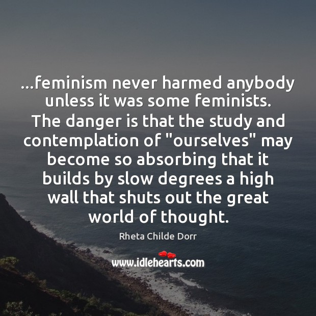Image, …feminism never harmed anybody unless it was some feminists. The danger is