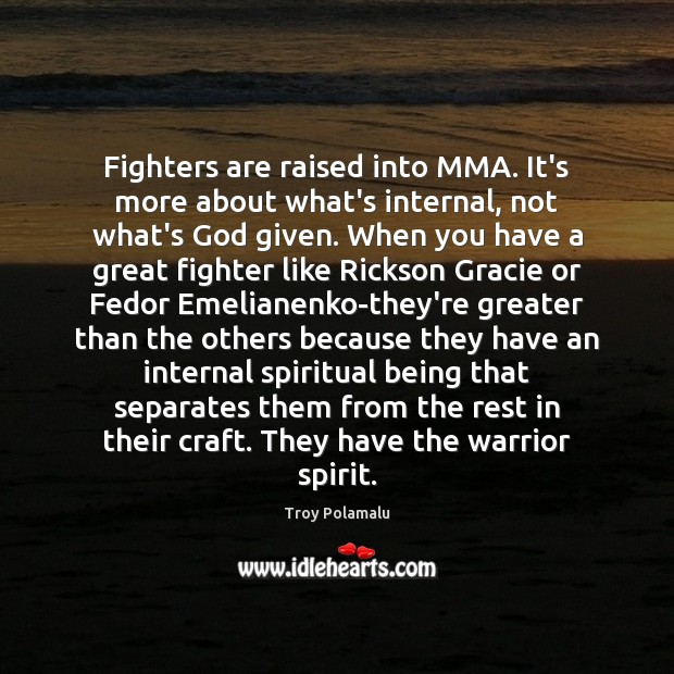 Fighters are raised into MMA. It's more about what's internal, not what's Troy Polamalu Picture Quote