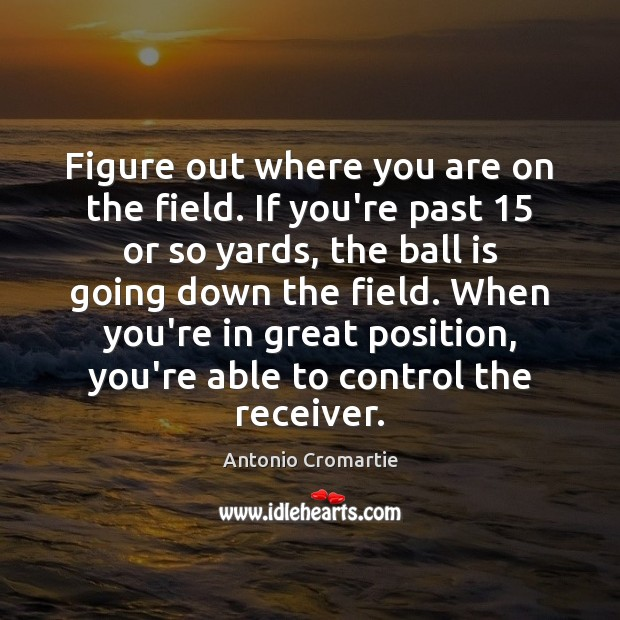Image, Figure out where you are on the field. If you're past 15 or