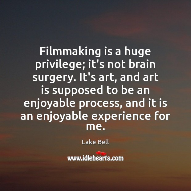 Filmmaking is a huge privilege; it's not brain surgery. It's art, and Lake Bell Picture Quote