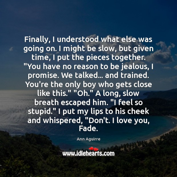 Finally, I understood what else was going on. I might be slow, Ann Aguirre Picture Quote