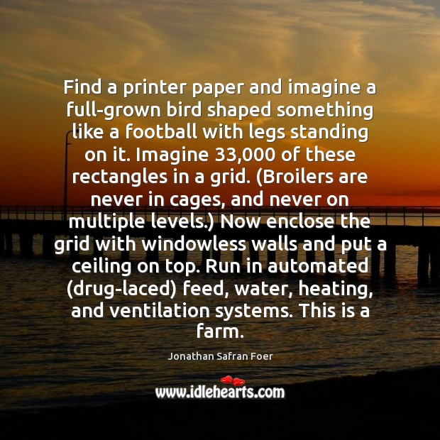 Find a printer paper and imagine a full-grown bird shaped something like Image