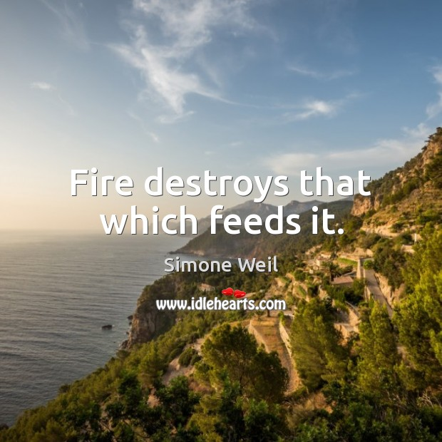 Fire destroys that which feeds it. Simone Weil Picture Quote
