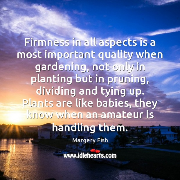 Firmness in all aspects is a most important quality when gardening, not Margery Fish Picture Quote