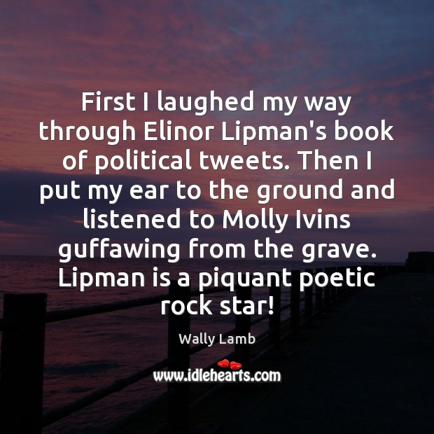First I laughed my way through Elinor Lipman's book of political tweets. Image