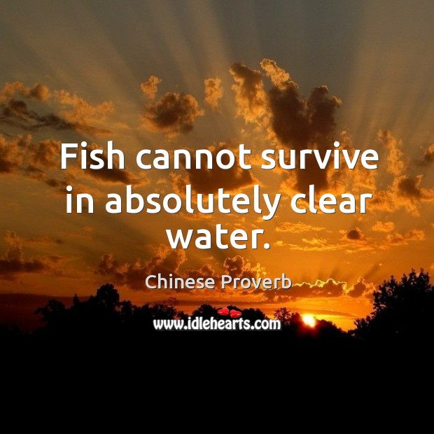 Fish cannot survive in absolutely clear water. Image