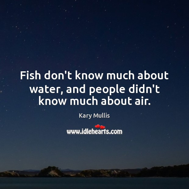 Fish don't know much about water, and people didn't know much about air. Kary Mullis Picture Quote