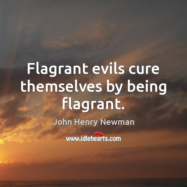 Flagrant evils cure themselves by being flagrant. John Henry Newman Picture Quote